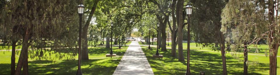 Dolce Vita at Colorado College